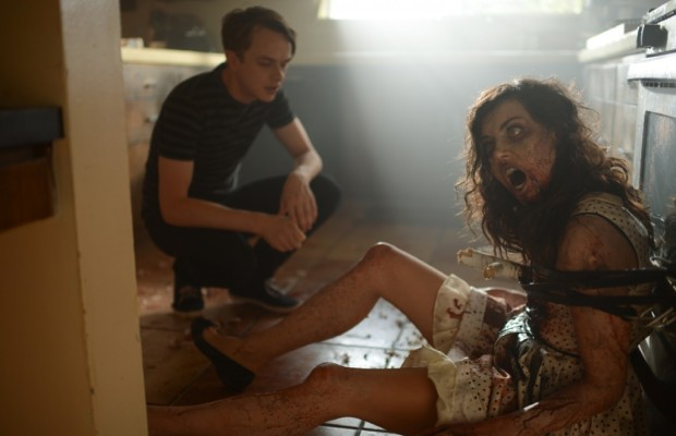 Life After Beth image